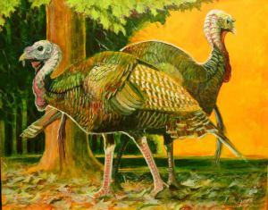 JerryJones_Turkeys